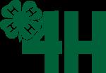 4H, logotyp